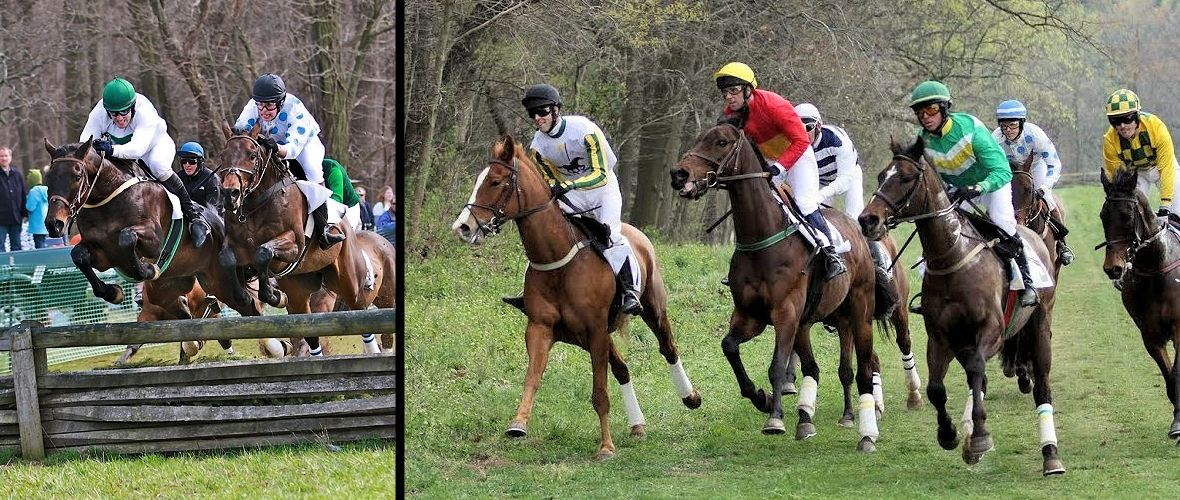 Brandywine Hills Point to Point - April 5, 2015