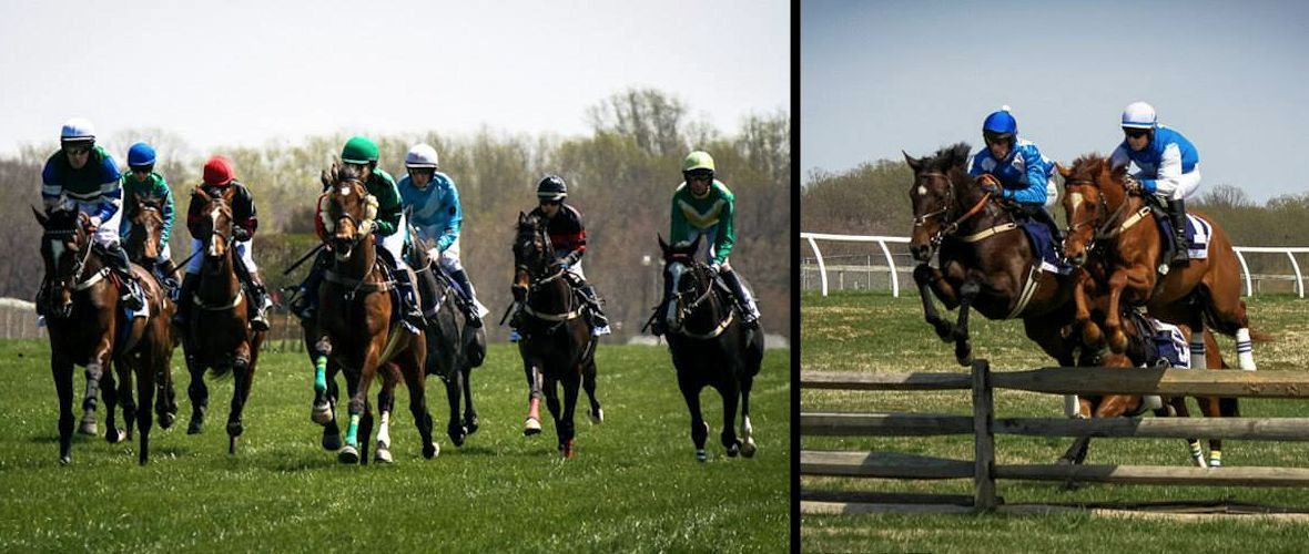 Fairhill Point to Point - April 19, 2015